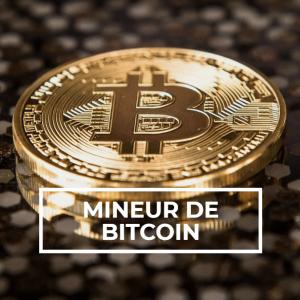 2021-08-13 16_50_53-MINEUR DE BITCOIN - Salto Conseil